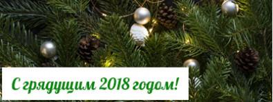 С наступающим, 2018 годом!