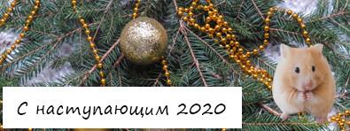 С наступающим, 2020 годом!